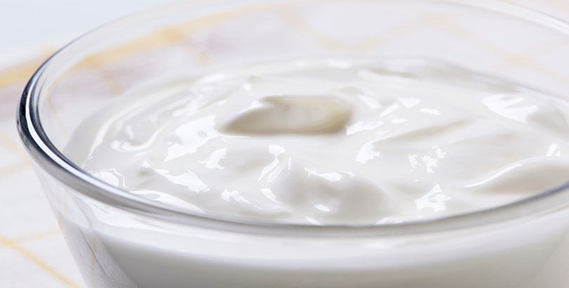 Plain Yogurt 625mg
